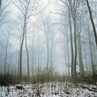 Yorkshire Landscape Photographer
